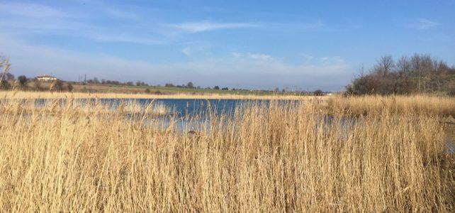 Мартенско пътуване (част 8) – Дуранкулашко езеро