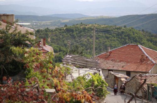 село Крибул