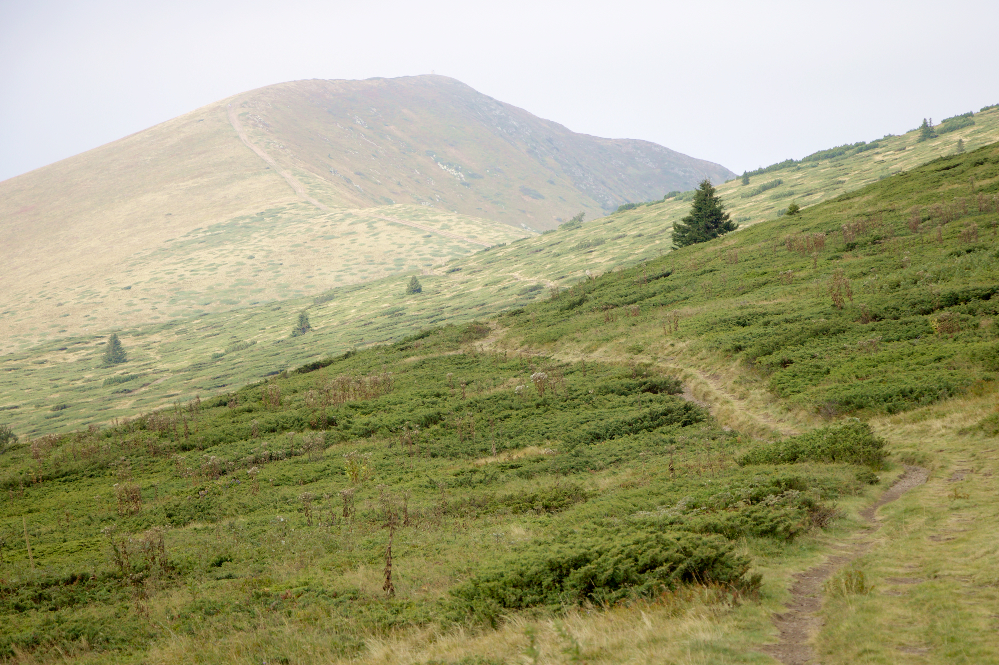 Съботна разходка до връх Ком