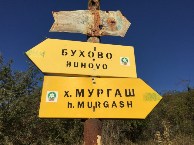 връх Мургаш