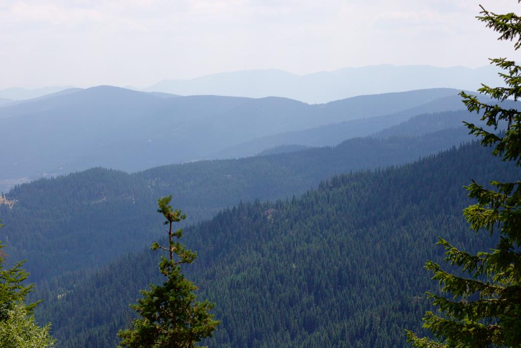 Гледка от връх Персенк